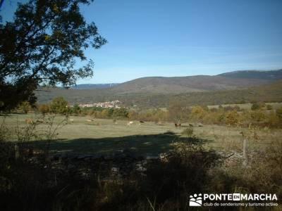 Senderismo Sierra del rincón - Sierra de Madrid; viajes senderismo madrid; senderismo entre semana
